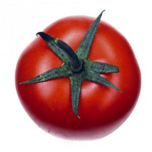 veg019-1