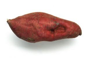 veg026-1
