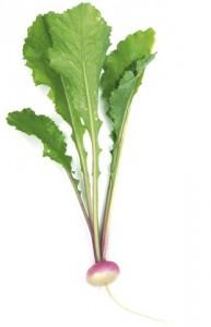 veg029-2
